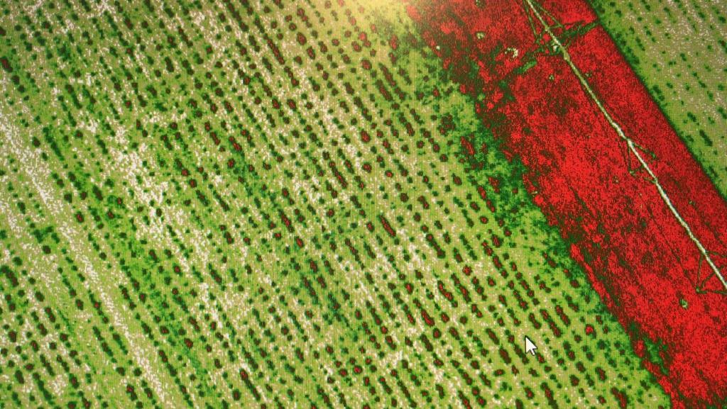 Aerial Services OmniDrones - Agri